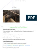 Buffalo Dairy Farm Project Report 4 Buffaloes, Business Plan,Subsidy