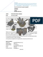 Carta de Presentacion Empresa y Presentacion Como Proveedor