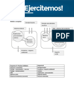 API 1 Gestion Ambiental