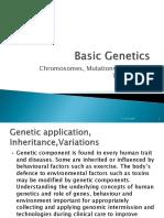 Basic Genetics Group Reporting