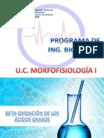 BETA-OXIDACION.pdf