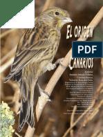 origencanarios.pdf
