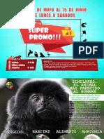 Catálogo animal para el Parque Zoológico de Huachipa