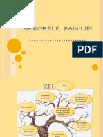 aplicatiedinperspectivaelevului_arborelefamiliei