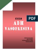 Ciclo ADH.pdf