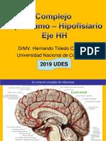 Complejo Hipotálamo-hipófisis