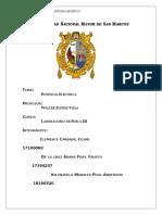 290475308-Informe-6-Lab-Fisica-3-UNMSM