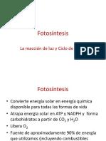 Bioquímica II - Clase 6 Fotosintesis