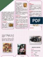 Dokumen.tips Triptico La Mashua