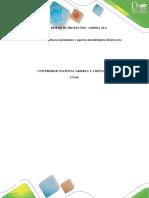 Bases Conceptuales y Aspectos Metodológicos Del Proyecto