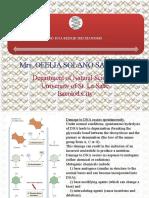 Mutation and Dna Repair Mechanisms