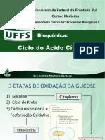 Bioquimica 09  - Ciclo Do Acido Citrico
