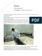 Branza - defecte.pdf