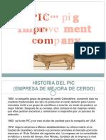 63836981-Pic-Cerdos.docx