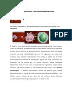 El Sistema Inmunológico Humano y Las Enfermedades Infecciosas