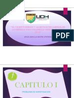 Diapositivas de Tesis 2