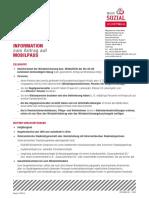 Info Mobilpass Antrag