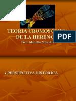 Teoría Cromosmica de La Herencia (1)