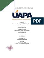 trabajo final anatomia y fisiologia del sistema nervioso.docx