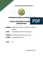 INFORME EXTRACCIÓN DE PECTINAS.pdf