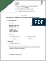 Informe-_determinacion-de-parametros-fi-qui%20(1).docx