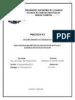 Reporte_practica_2_Reaccion_de_Maillard.docx