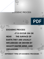 EXOGENIC process