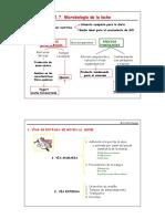1.-Microbiologia de La Leche en La Industria( Word)
