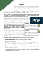 5. EL PARRAFO (1)