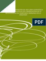 Bases para la definición de una linea estratégica de apoyo a iniciativas de conservación de la biodiversidad en territorios indígenas de la Amazonia.