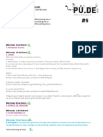 Programa PUDE 5 (2)
