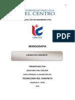 MONOGRAFIA CURADO DE CONCRETO.docx