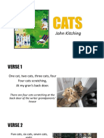 CATS by John Kitching