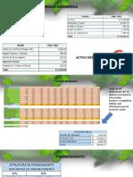 Proyecto de Inversion Ppt