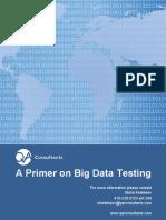 Primer on Big Data Testing