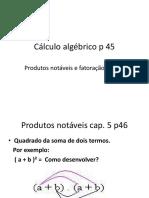 CALCULO ALGEBRICO - 9ANO
