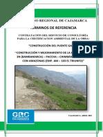 Tdr Certificado Ambiental Puente Gavilan