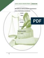trabajoconsollli-190104134543.pdf
