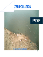 10.LECTURE Water Pollution