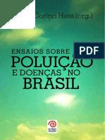 LIVRO PUBLICADO PRONTO sonia hess.pdf