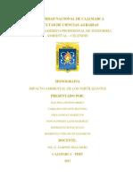 IMPACTO AMBIENTAL DE LOS FERTILIZANTES.pdf