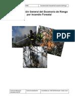 Escenario de Riesgo Por Incendios Forestales