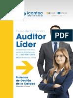 Auditor Lider
