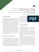 respiratorio_04_espirometria.pdf