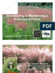 Creating a Schoolyard Prairie - Diana Foss - TPWD