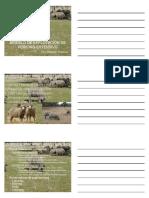 Modelo de explotacion de porcino extensivo.pdf