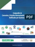 Compendio de Convenios y Tratados Internacionales en materia Ambiental, Ratificados por Guatemala