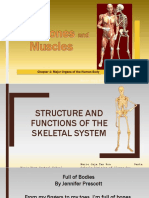 Note Skeleton and Muscle