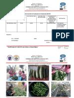 Abra Es-gpp Report 2018-2019