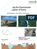 Mitigating the Downstream Impacts of Dams
